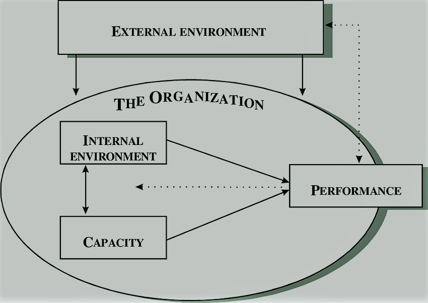organizational assessment coaching sessions
